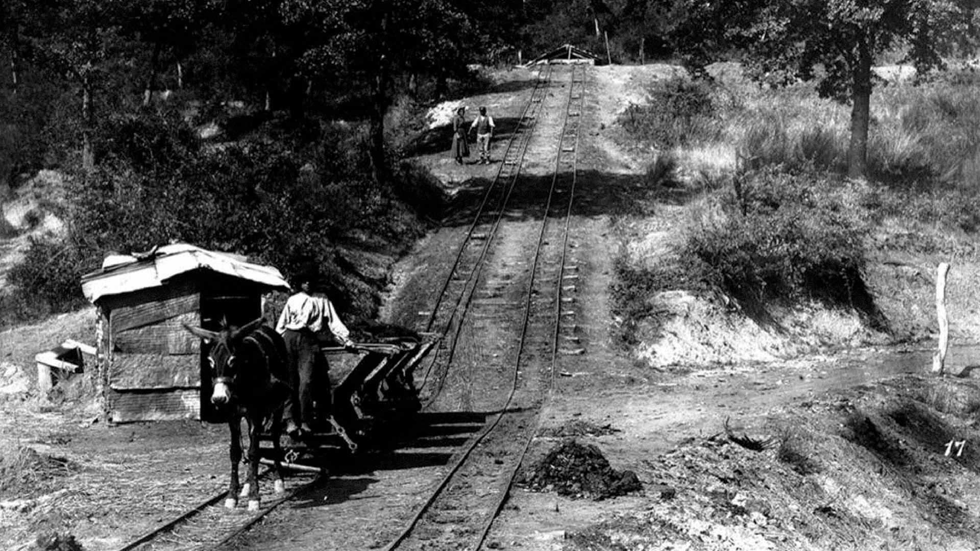 Recogida de carbón. Archivo fotográfico Alinari.
