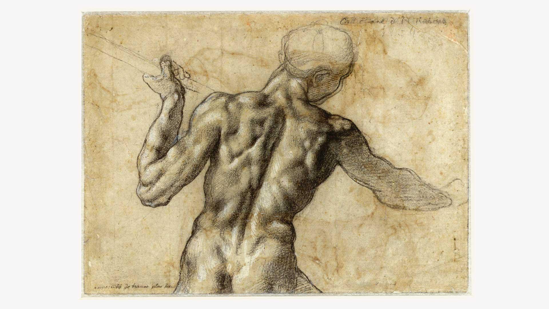 L'età di Michelangelo. I capolavori dell'Albertiniana